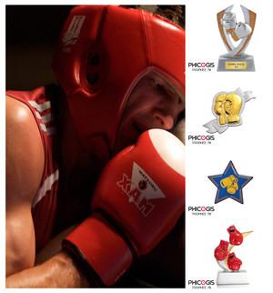 phicogis-boxe