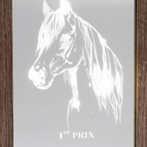 phicogis-equitation-retraite-chevaux-holy-18