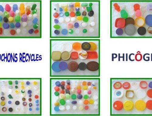 Phicôgis : L'environnement, une cause investie par l'entreprise
